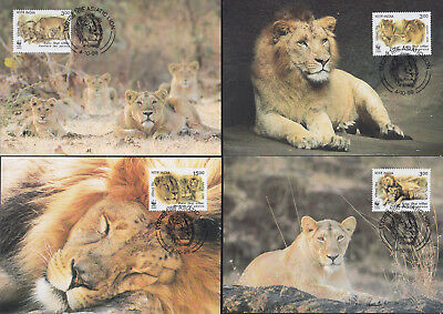 052680 WWF Katzen Cats India Maximum Card ´s