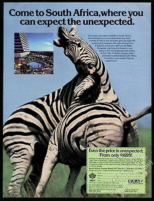 1984 Zebra fight photo South African Airways vintage print ad