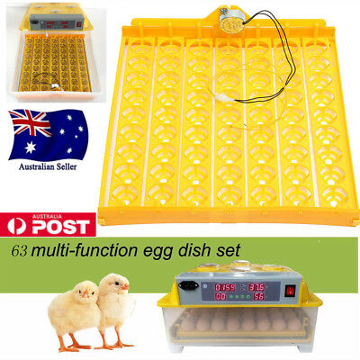 Digital 63 Eggs Incubator Automatic Turner Poultry Chicken Duck Egg Viewing Hole