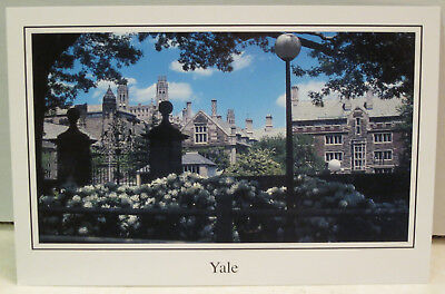 Yale University 12 Residential Undergraduate Colleges Magnet