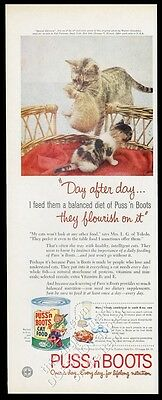 1959 cat kittens tortoise shell kitten scruff photo Puss n Boots food print ad
