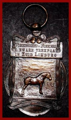 Netherlands/ Equestrian/ Heavy Draft Horse/ Union Breeders/ Limburg/SILVER MEDAL