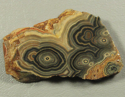 FLOWERING ONYX...Outstanding flowering patterns & bands in a variety of colors.