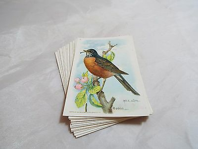 Useful Birds Of America Fifth Series Complete Set Of 15 Cards By Arm And Hammer