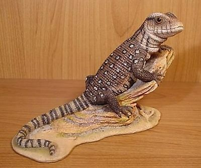Country Artists Natural World Monitor Lizard New in Box - Excellent Likeness