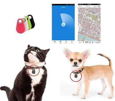 Dispositivo Bluetooth GPS anti-smarrimento per cani e gatti