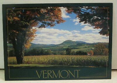 Autumn View Foliage Farm Country Vermont Postcard