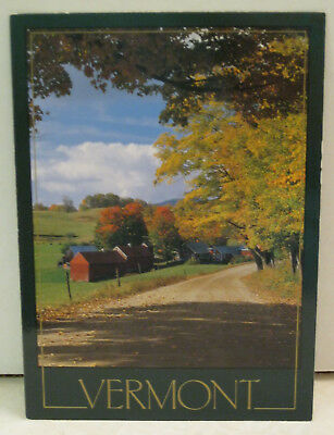 Autumn View Foliage Country Road Vermont Postcard