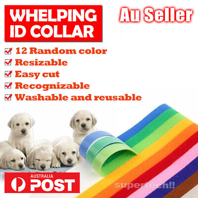 ID Whelping Collars Bands Puppy Kitten Pet Identification Tags Reusable 12 color