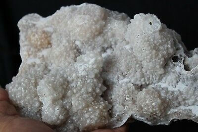 1222g NATURAL WHITE agate GEODE CRYSTAL CLUSTER Mineral Specimens #&C45