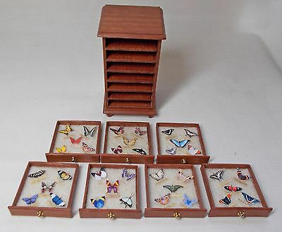 Dollhouse Handmade Miniature Jarrah Wood Butterfly Display Unit