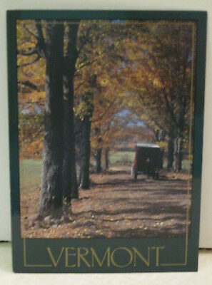 Autumn Artful Symmetry & Trail Vermont Postcard