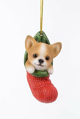 Chihuahua Dog in Stocking Hanging Ornament Pet Pal Collection Figurine Mini Pup