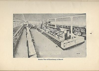 1913 Alabama Coal Operators' Association; running company store commissary RODEN