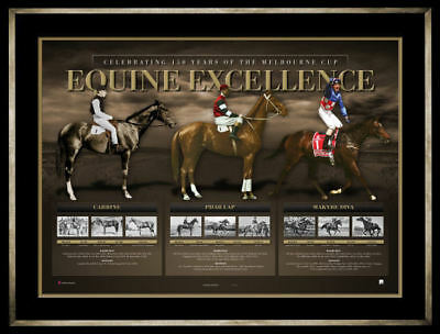 Equine Excellence  Carbine  Pharlap  Makybe Diva  Limited Edition Print