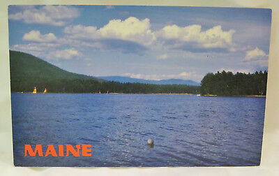 Northern Lakes Maine Postcard