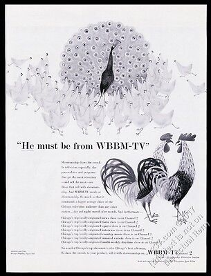 1955 peacock and hens art WBBM TV Chicago vintage print ad