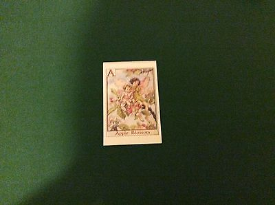 1 FLOWER FAIRIES POSTCARD by Cicely Mary Barker Letter F of the Alphabet.