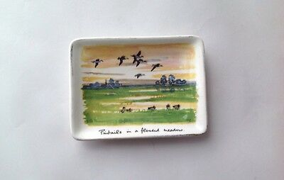 Midwinter Stylecraft Pin Dish, Peter Scott Pintails in a Flooded Meadow