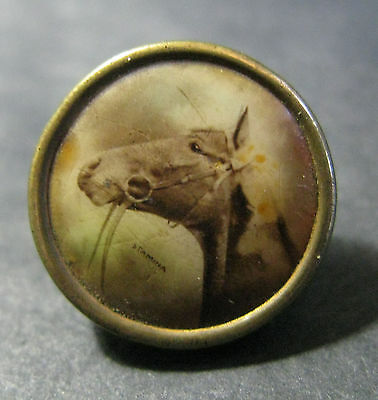 """Rare C.1907 Lithograph Button Of """"stamina"""" - American Thoroughbred Racehorse"""