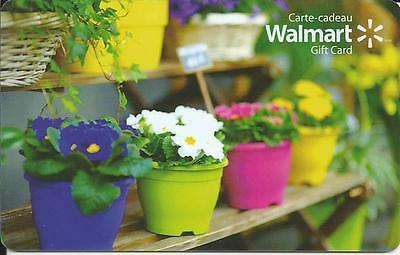 New Spring Flowers 2016 Mint Gift Card From Walmart Canada Bilingual