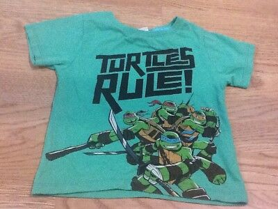 Baby Boys Size 18-24 Months Green Turtles Rule! T-Shirt
