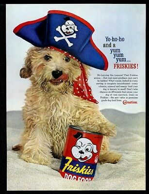 1960 mutt photo in pirate hat Friskies dog food vintage print ad