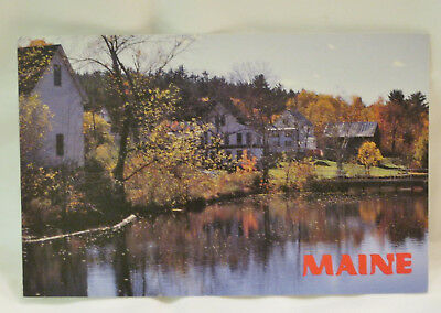 Ossipee River Maine Postcard