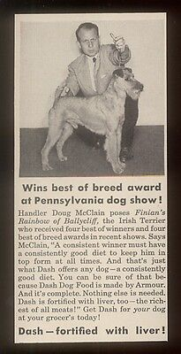 1951 champ Irish Terrier photo Dash dog food print ad