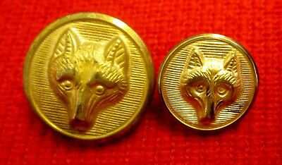 Boy Scouts of America Wolf Cub Brass Buttons meau13