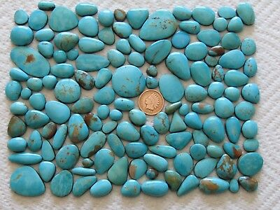 130 King's Manassa Turquoise 1000 carat Cabochons Cab Lick Skillet Wholesale Lot