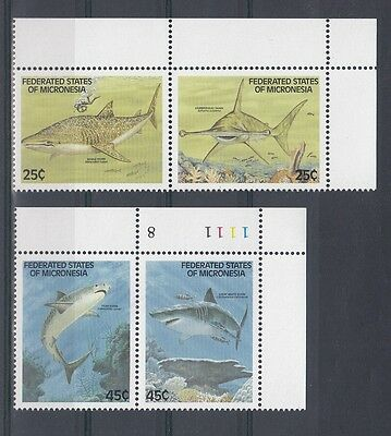 Timbre Stamp  4  Micronesie  Y&t#87-90 Poisson Requin Neuf**/mnh-Mint 1989 ~A34