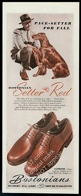 1945 Irish Setter photo Bostonian men's Setter Red shoes vintage print ad