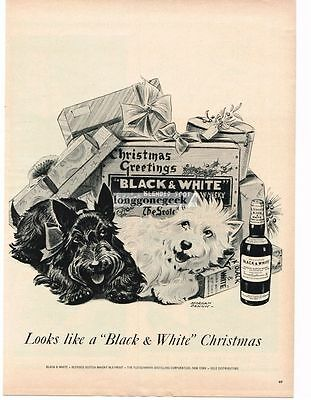 1955 Black and White Scotch Whisky Scottish terriers art Morgan Dennis Vtg Ad