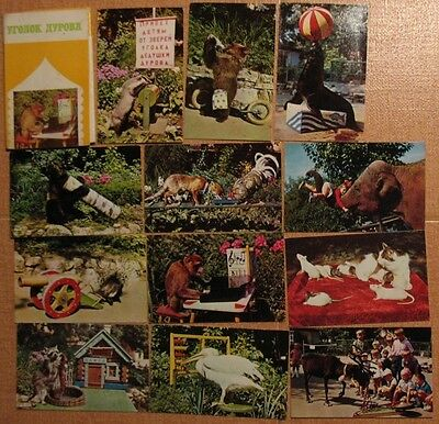 Lot 15 Russian POSTCARD SET PC Photo Animals Arena Circus Clown Durov ZOO PARK