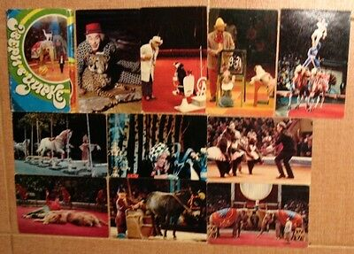 Lot 12 Russian POSTCARD SET PC Photo Animals Arena Circus Clown ZOO PARK Popov