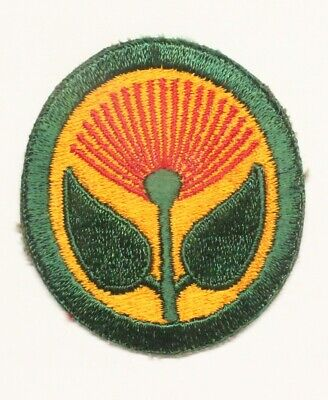 Army Patch:   Hawaiian Coastal Defense - WWII original