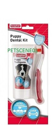 Beaphar Puppy Dental Kit -  Toothbrush & Toothpaste Liver Flavour