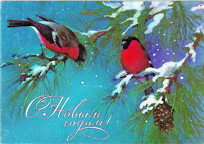 1985 Russian NEW YEAR postcard bullfinches on snow covered tree by A.Isakov