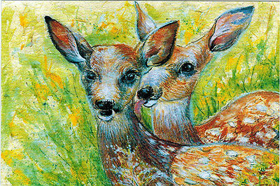 """THE MOMENT"" TWO YOUNG DEERS Modern Russian postcard"