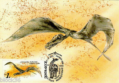 1990 very rare Russian Maxi card on Fossil Animal: SORDES