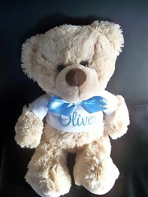 Personalised Teddy Bear Gift Any Name 26cm Blue OR Pink embroidery Baby Twins