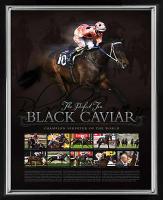 Black Caviar  Perfect 10 Framed Limited Edition Print Moody Nolen