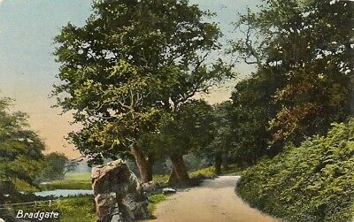 Old Postcard-BRADGATE-PARK-LEICESTERSHIRE-UK.