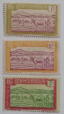 Cameroon      Thin    Stamp Scu555Jj .....worldwide Stamps