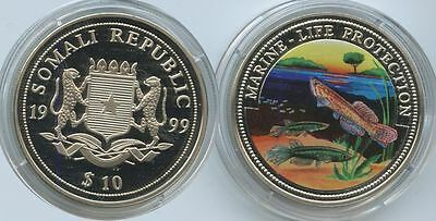 GS329 - Somalia 10 Dollar 1999 Marine Fische Life Protection Multicolor