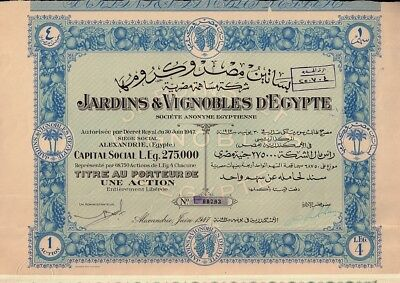EGYPT Winery : Jardins & Vignobles  d'Egypte Alexandria dd 1947 - 1 share