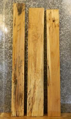 3- Salvaged Kiln Dried Spalted Maple Craft Pack/Lumber Boards 16900-16902