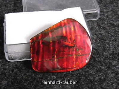 Rt -  Gem - Ammolith - Ammolite - Korite - Colorchanger - Doubbleside 28,39 Ct