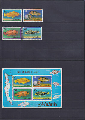 054768 Fische Fish Malawi 285-88 + Block 49 ** MNH Year 1977